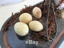 Antique Victorian French Bridal Wedding Dome Gold Gilt Ormolu Eggs Rare